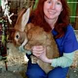Susan Clark of Topanga Animal Rescue_1